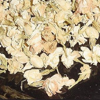 Жасмин (Jasminium odoratissimum)